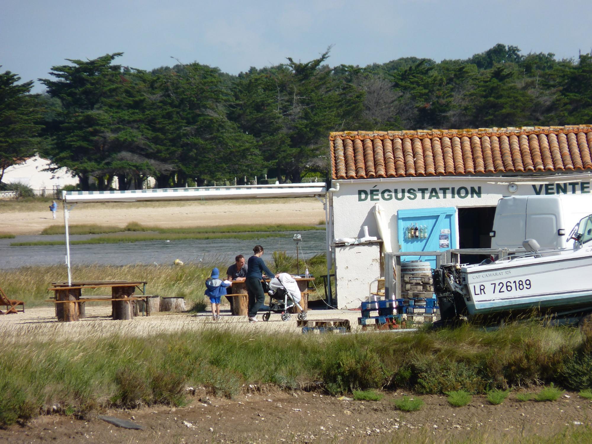 Discovering Aix island's oysters - Crossings by ferry boats Fouras / Aix island