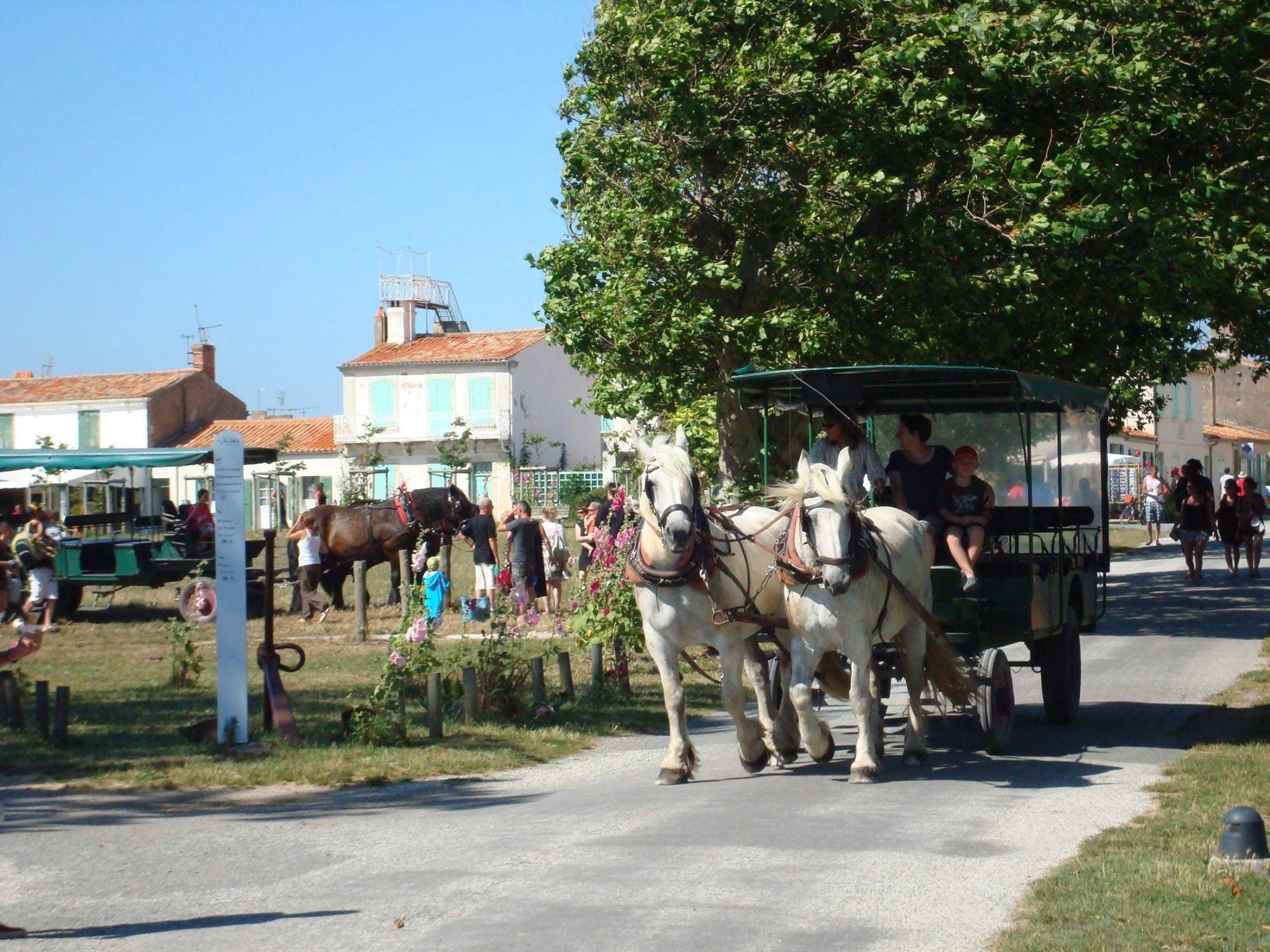 Aix island by horse an carriage - Crossings by ferry boats Fouras / Aix island